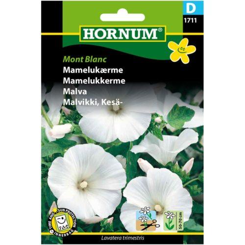 HORNUM MONT BLANC MALVIKKI, KESÄ